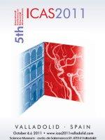 Cartel V Congreso Internacional de ICTUS