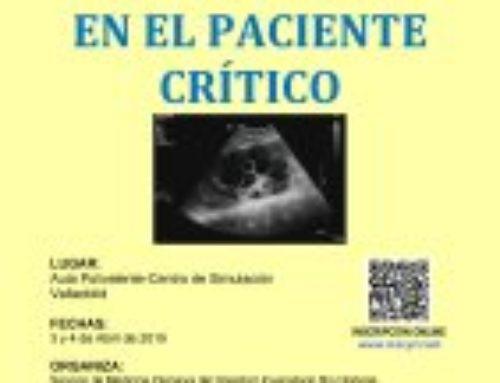 VI Curso Básico de Ecografía en el Paciente Crítico