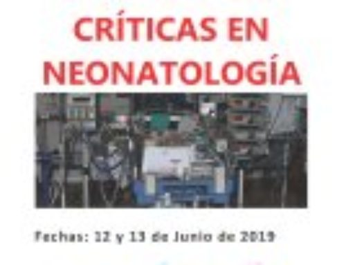 III Curso de Simulación en Situaciones Críticas en Neonatología