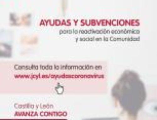 Ayudas y Subvenciones para la reactivación económica y social en Castilla y León