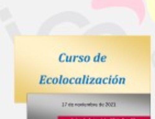 Curso de Ecolocalización
